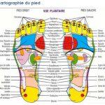 reflexologie plantaire, reflexologie et le mal de dos, soigner le mal de dos avec la réflexologie